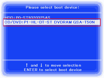 please-select-boot-device