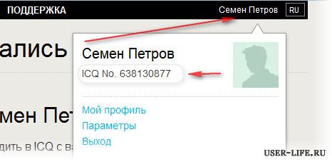 Registratsiya-novogo-nomera-aski