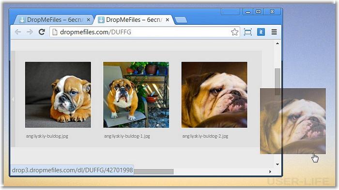 drop-me-files-6